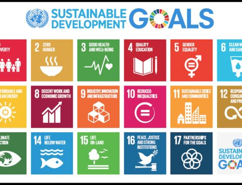 Summary of the sustainable development goals e-forum discussion